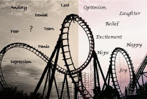 Riding-the-Emotional-Rollercoaster-300x202.jpg